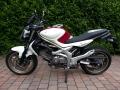 Rijschool t10n Gladius Les motor
